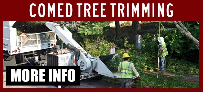com-ed-tree-trimming-site